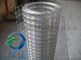 电焊网网片 电焊网卷网 改拔电焊网-耀佳丝网