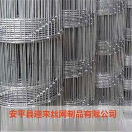 牛栏网 养殖镀锌电焊网 养殖镀锌铁丝网