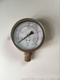 YE-100轴向带边不锈钢膜盒压力表,充油抗震压力表