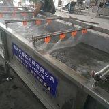 蔬菜果蔬气泡喷淋清洗机 果蔬清洗加工设备