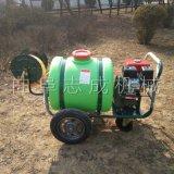 志成160L手推式汽油喷雾机园林专用打药机