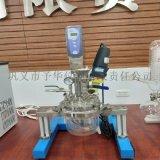 Reactor-5L实验室均质乳化系统反应器