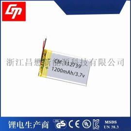 112739 1200mAh 3.7V聚合物锂离子电池 可充电电芯 厂家**