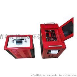 红外烟气分析仪-LB-3010非分散红外烟气分析仪