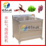 小型气泡清洗机 水果清洗机 可加装超声波功能