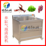 小型氣泡清洗機 水果清洗機 可加裝超聲波功能