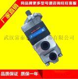 CBQTL-F563/F420/F410-AFP齿轮泵