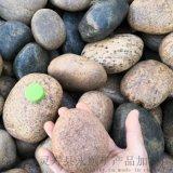 保定雄安直銷永順各種型號天然鵝卵石