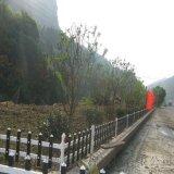 浙江紹興綠化圍欄圖片