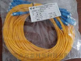 SC/UPC-SC/UPC 3米光纤跳线
