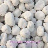 本格厂家直销3-5毫米汉白玉石子白色机制鹅卵石