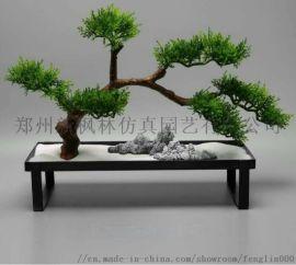 郑州枫林园艺仿真小摆台装饰罗汉松摆台