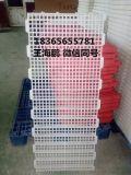 散養雞漏糞板報價 供應雞漏糞板 塑料雞漏糞板