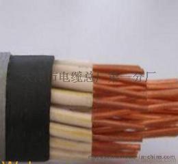 阻燃控制电缆ZR-KVV
