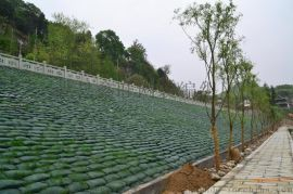 河北低价批发 边坡绿化植生袋 绿色环保植草袋 生态袋 价格