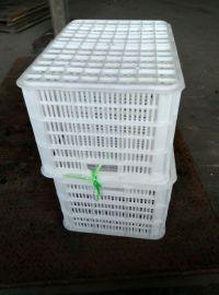100斤塑料周转筐 ,100斤蔬菜周转筐