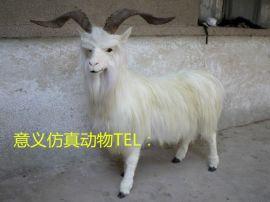 仿真山羊动物模型玩具摆件野生动物标本模型仿真绵羊