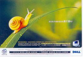 广州彩色名片印刷无碳复写纸印刷广州不干胶印刷宣  张设计印刷