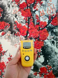 GAXT系列单一气体检测仪加拿大BW