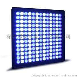 内置蓝白大棚LED植物生长补光灯 面板灯