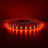 5050橙光灯条  低压12V软灯条
