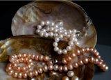 珍珠饰品手工活外发在家加工