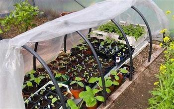 溫室大棚膜,塑料大棚膜,農用大棚