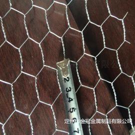 定州厂家加工订做**小六角网 六角拧花网 养殖网