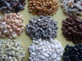 供应五彩石子,装饰用染色鹅卵石,盆栽五彩鹅卵石