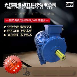 YE3系列高效三相异步电动機