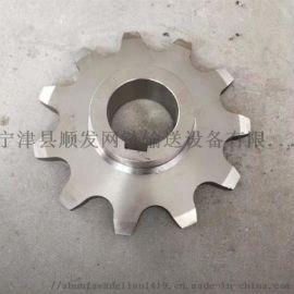 驱动双排链齿轮 不锈钢链轮