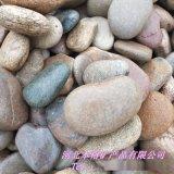 張家口鵝卵石 天然鵝卵石 公園鋪路3-5cm鵝卵石