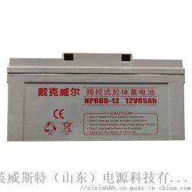 EPS/UPS蓄电池 长寿命蓄电池 65Ah免维护