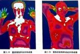 测体温的热成像检测仪