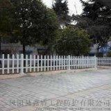 青海海西绿化小护栏 草坪护栏护栏厂家