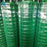 山坡养鸡隔离栏 绿色方格网