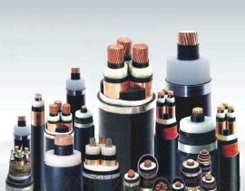 (福建三农)BPGVFRP2(3+3)变频电缆丨亨仪