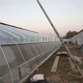 建设农业大棚日光温室温室骨架