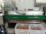 滾動式食品多功能真空包裝機,貝爾真空包裝機械設備