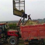 牡丹江玉米青儲收穫機 玉米收割青貯機廠家