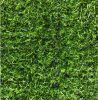 咸陽哪余有賣人造草坪模擬草坪137,72120237