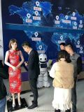 美女迎宾接待礼仪机器人服务机器人
