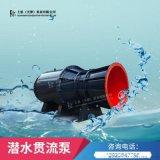 廣東葉輪內置式潛水貫流泵參數