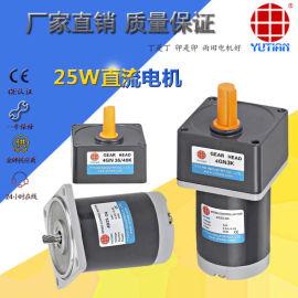20W直流电机/永磁马达