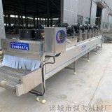 枇杷清洗漂烫风干烘干设备 枇杷糖浆成套加工设备