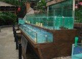 深圳土建海鲜鱼池、海鲜鱼池定做制作