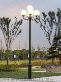 玉蘭燈廠家直銷戶外道路照明led玉蘭燈