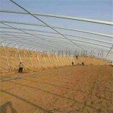 山东潍坊日光温室日光薄膜温室建设工程