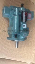 V15A1RY-95油泵