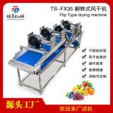 大型水果风干机支持定制各类生产线TS-FX35